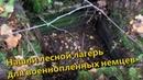 Нашли лесной лагерь для военнопленных немцев
