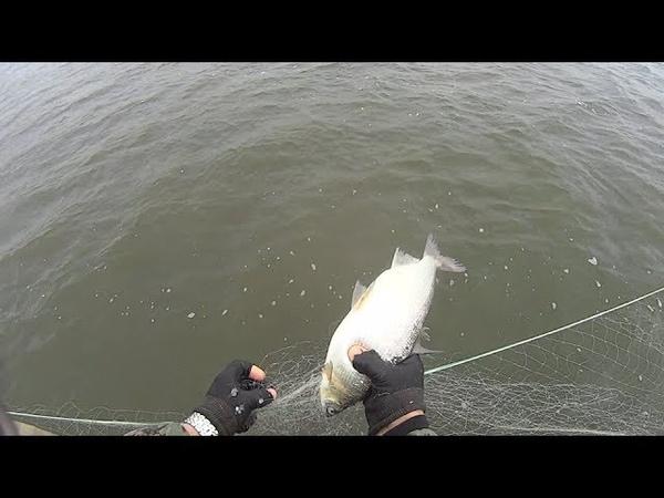 Рыбалка сетями на севере. Промысловая рыбалка.