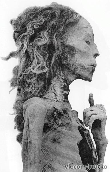 Мумия древнеегипетской царицы Тии - жены фараона Аменхотепа III (XVIII династия), бабушки Тутанхамона. Она умерла в 1338 году до н. э...