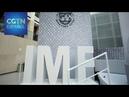 Las propuestas para convertirse en el nuevo líder del FMI empiezan el 29 de julio