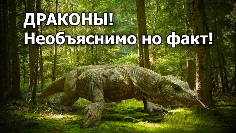 А были ли драконы на самом деле Необъяснимо но факт!