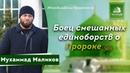 Мухаммад Маликов - Боец смешанных единоборств о Пророке ﷺ