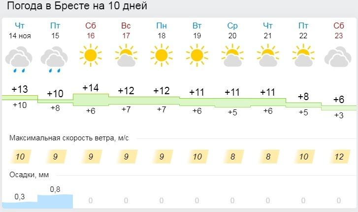 Теплая и преимущественно без осадков погода сохранится в Беларуси до начала следующей недели