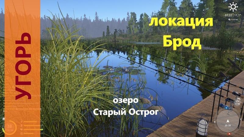 Русская рыбалка 4 озеро Старый Острог Угорь под мостом Eel