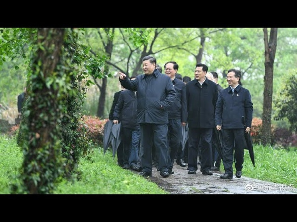 Xi inspects wetland conservation urban management in Hangzhou