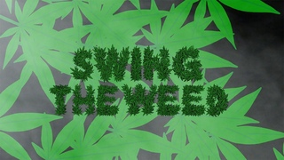 T.Y. - Swing The Weed feat. Wiz Khalifa & Curren$y (Official Video)