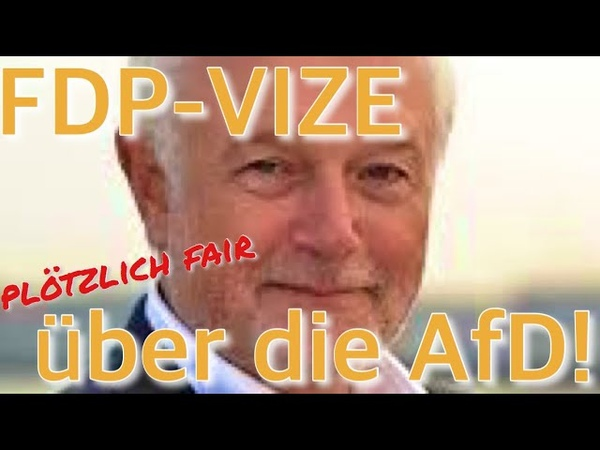 FDP-VIZE NIMMT AfD IN SCHUTZ: Gegen Ungeheuerlichkeiten der CDU!