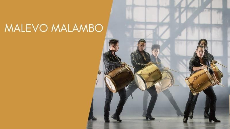 Malevo Malambo DANCE OPEN festival