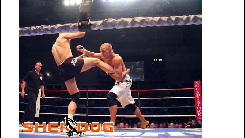 Georges St Pierre vs Dave Strasser TKO 19