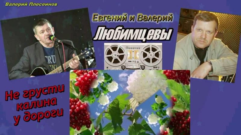 Евгений и Валерий Любимцевы Не грусти калина у дороги