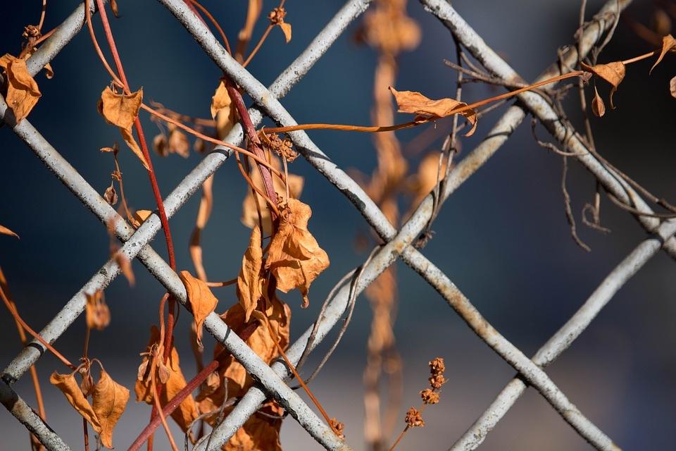 В Волжске с территории ритуальной фирмы украли забор