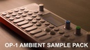 OP-1 Ambient Synth Sample Demo
