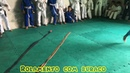 Jiu Jitsu Lúdico Aula para crianças