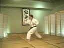 Hirokazu Kanazawa - Niju Hachi Ho