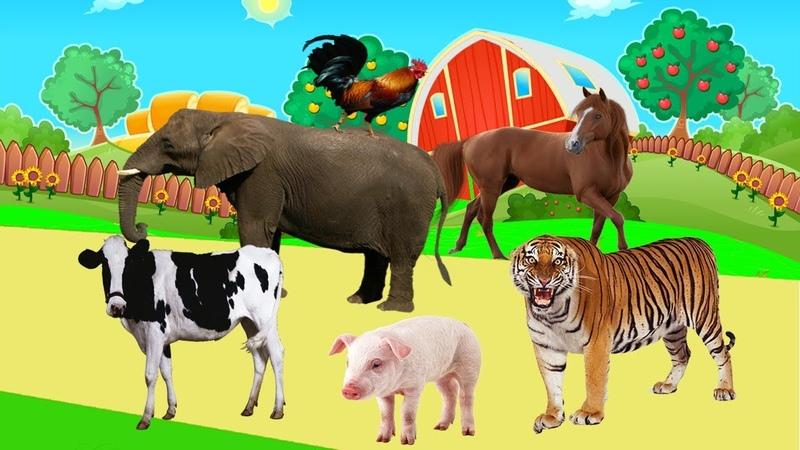 Tiergeräusche für kinder VIDEO 3D 40 tiere lernen im dschungel bauernhof