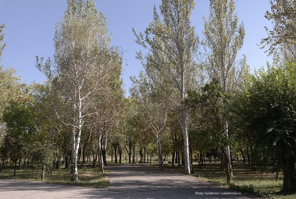 Осенние пейзажи в бишкекском Парке Победы