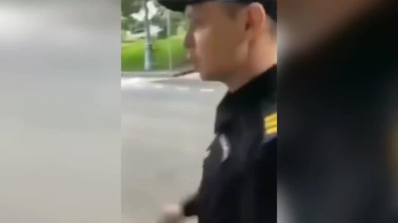 Товарищ полицейский