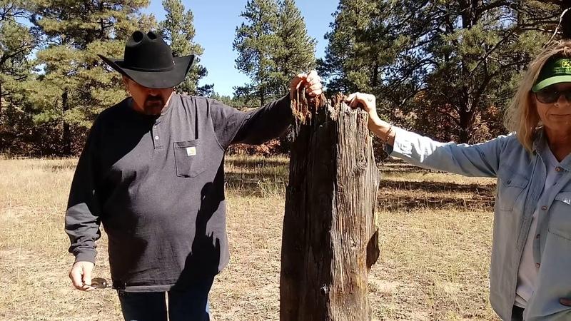 Interview John Bailey: Hunter of Satanic Pedophiles: Sukkot Testimony