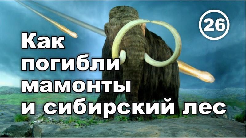 Гибель мамонтов и сибирского леса Что скрывают ученые Фильм 26