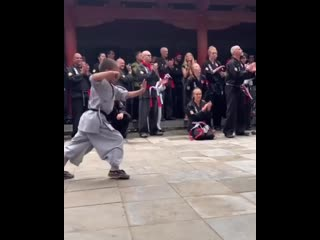 7 year old shaolin monk performing tong zi gong