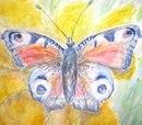 Фотоальбом Anastasia Butterfly