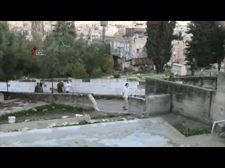 Десятки еврейских поселенцев напали на дома палестинских семей в районе Тель Румейда и на улице Шухада.