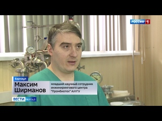 Учёные Алтайского госуниверситета знают, как сделать сыр вкуснее и дешевле .