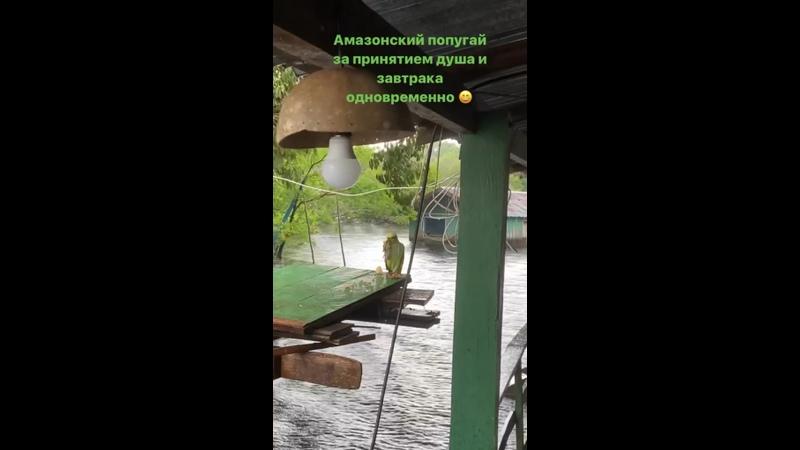 Видео от Анастасии Середы