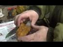 Как правильно заваривать чагу, березовый гриб, чага