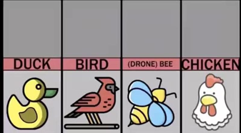 Продолжительность спаривания у различных животных