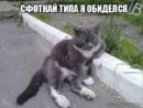 Фотоальбом Елены Слепневой