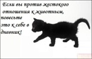 Пискунович Мила | Санкт-Петербург | 44