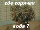 Личный фотоальбом Карины Кожухарь
