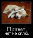 Персональный фотоальбом Оксаны Харламовой