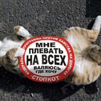 Личная фотография Κирилла Εфремова