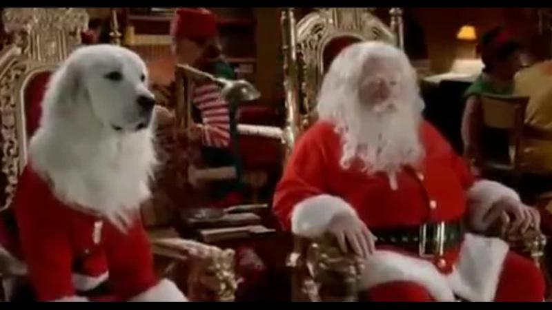 Санта Лапус и его помощники разносят подарки
