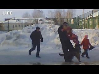 Собака набросилась на двух маленьких детей в Новосибирске