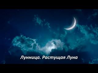 Конференция «Лунница. Растущая Луна» с Аленой Полынь (демо-версия).