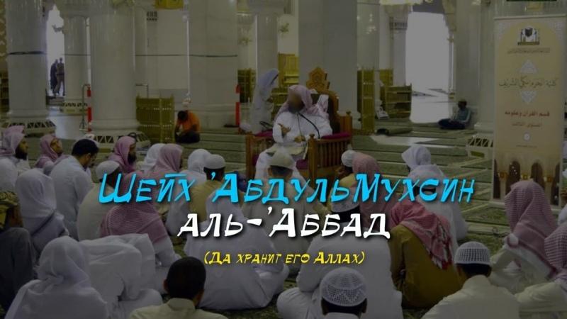 Интересный случай, связанный с шейхом АбдульМухсином аль-Аббадом - Шейх АбдуЛлах аль-Гъунейман
