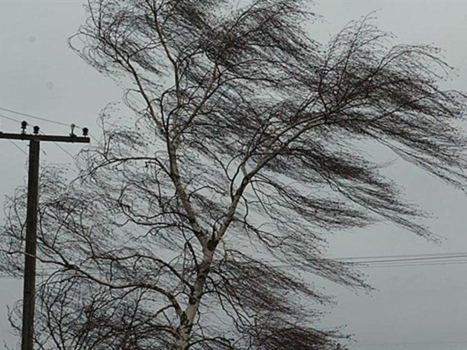 Региональное ГУ МЧС предупреждает о неблагоприятных погодных условиях