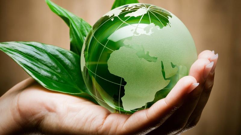 Грант Министерства экологии и природных ресурсов Республики Татарстан, изображение №1