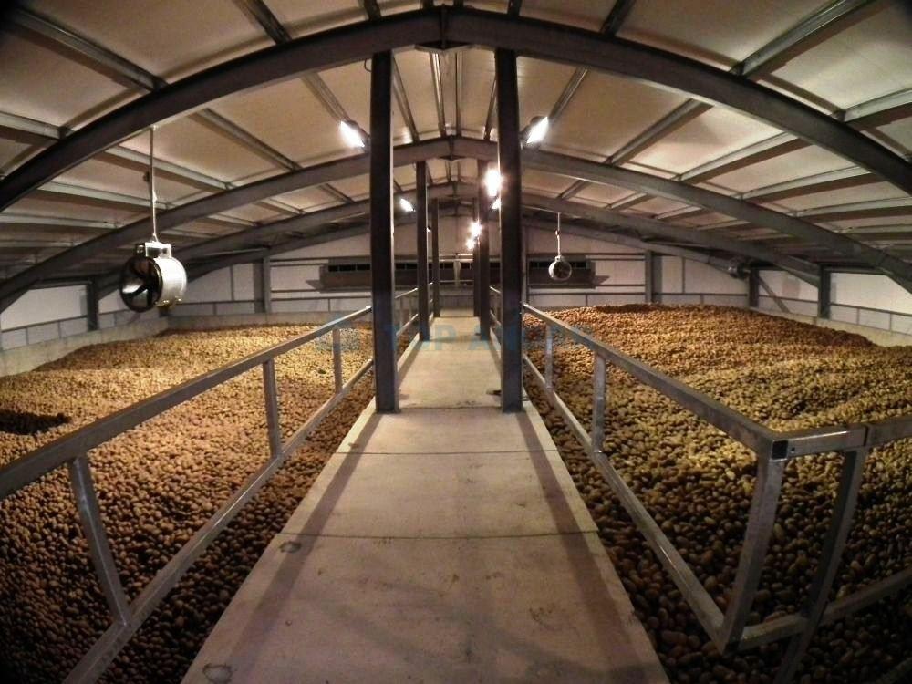 Реконструкцию картофелехранилища за 500 млн руб. в Талдоме завершат в начале 2021 года