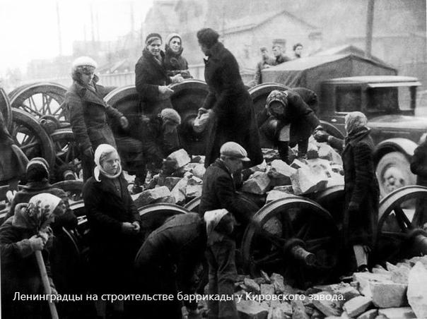 Блокада Ленинграда в годы Великой Отечественной войны, 1941-1945 гг., изображение №1
