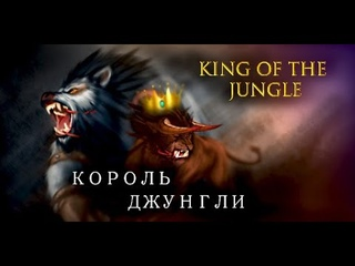 Arryvedercy Feral PvP Arenas WotLK  King of the jungle movie