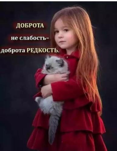 Фото №456259828 со страницы Максима Блидаря
