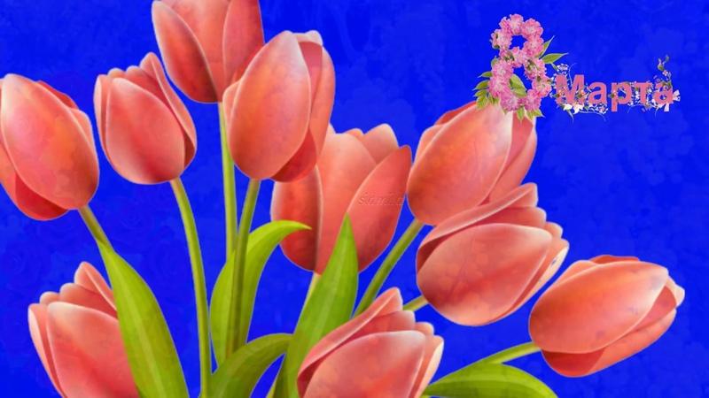 СКАЗОЧНО КРАСИВОЕ ПОЗДРАВЛЕНИЕ С 8 МАРТА С женским днем 8 марта Видео открытка