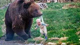 Рискуя жизнью, медведица принесла ребенка к людям. То, почему она это сделала просто невероятно!