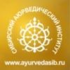 Сибирский Институт