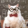 Физика или химия
