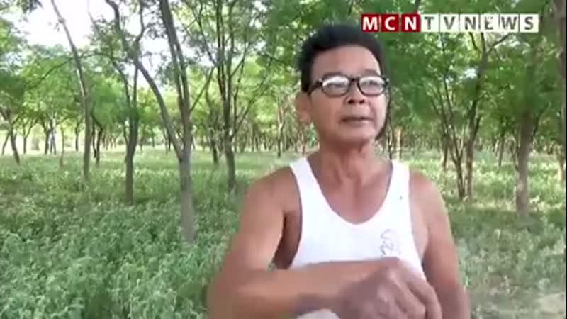 NLD ပါတီဝင်နဲ့ ရန်ပွဲမှာ မဆိုင်သူတွေကို ဖမ်းနေမယ့်အစား တစ်ရွာလုံးကို လာဖမ်းဖို့